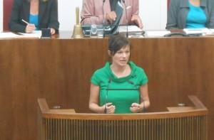 Reden schwingen im Parlament