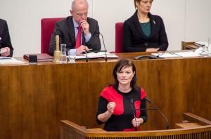 Rede Landtag November 2013